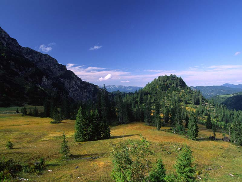 Moor bei der Rotwandalm ©Naturpark Karwendel