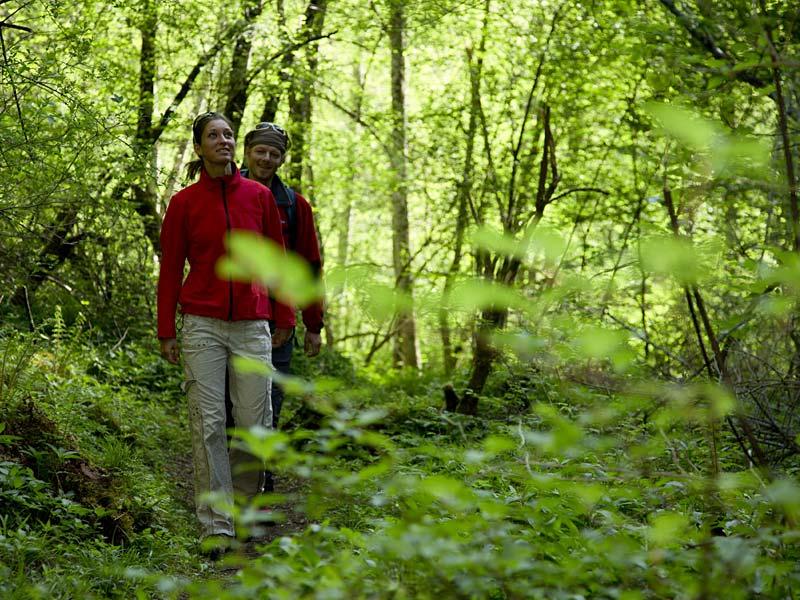 Arzler PitzeklaaTOP 10 Arzler Pitzeklamm ©TVB Pitztalmm ©TVB Pitztal